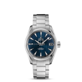 Omega Aqua Terra 150m Gents  watch replica 231.10.39.21.03.001