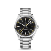 Omega Seamaster Aqua Terra Mens  watch replica 231.10.42.21.01.002