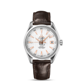 Omega Seamaster Aqua Terra  watch replica 231.13.42.21.02.002